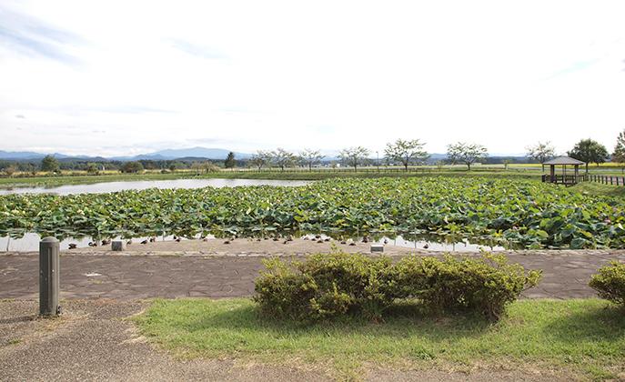 釜堤ため池