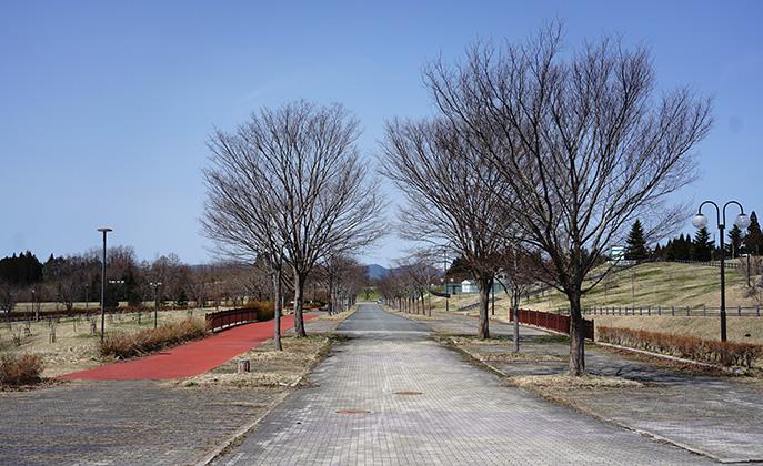 アルパス 散策路
