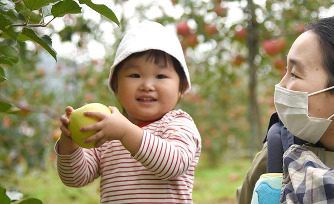 秋田市の「子育て応援Seed」には親子の心を掴むイベントが盛り沢山!