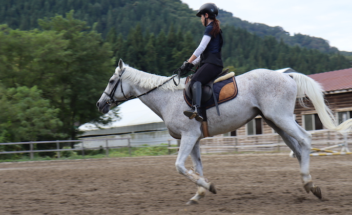 〈大仙市〉気分爽快!乗馬クラブ「エクセラ」へ行ってみよう!